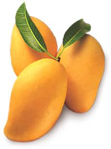mangos-big11c798.jpg